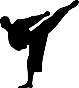 kickboxing-150331_640