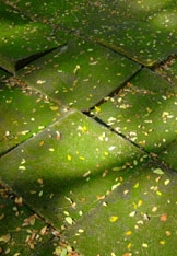 groene-tegels